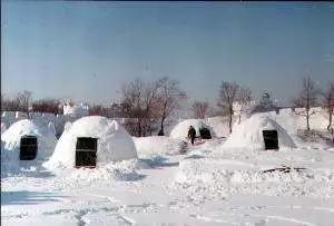 """""""南极科考队面对面""""免费参加 冰天雪地里的趣事"""