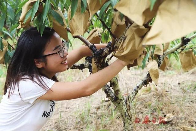 为了这个心愿 绍兴姑娘离开北京回乡务农