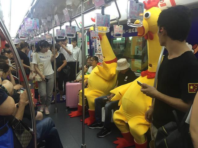"""""""尖叫鸡""""现身杭州地铁 网友直呼鸭梨山大"""