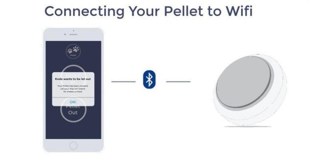 Pellet宠物需求按钮 改变你与狗狗的沟通方式