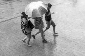 三位市民撑着一把伞在雨中奔跑