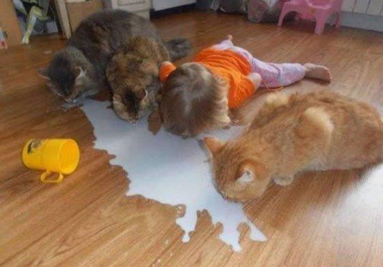 可爱爆了!那些动物和萌孩儿的欢脱日常