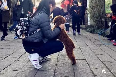 主人�:*ދh^h�_杭州保安捡了小狗不归还 与狗主人争吵后将狗摔死