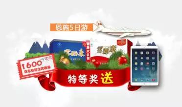 来!写下新年愿望 ipad可能就是你的!