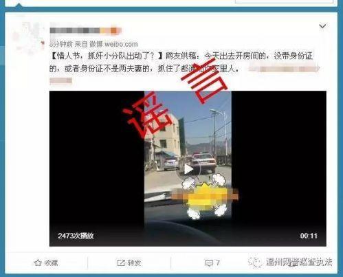 网民发布恶搞警方情人节查房行动谣言 被拘留