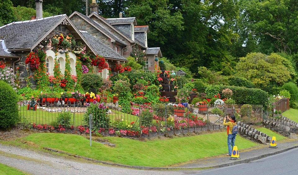 花园_七旬老人辛勤照料16年将自家庭院变成童话花园