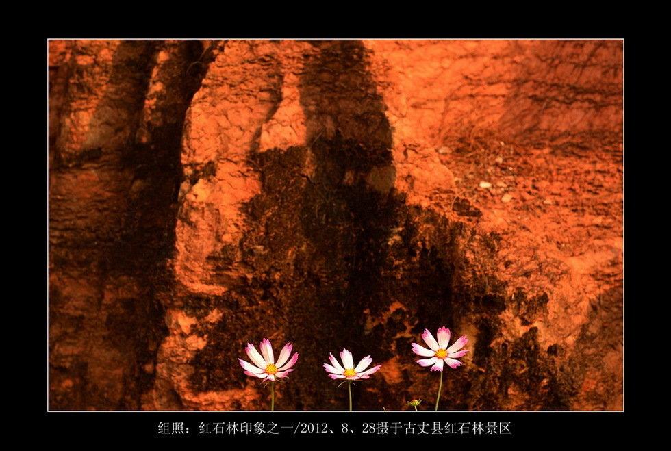 红石林印象(组1)-郑国强