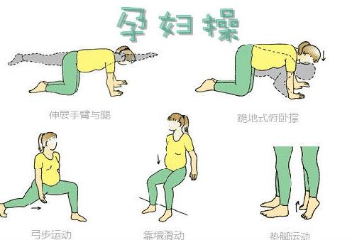 孕后期锻炼顺产_有氧操——使准妈妈身体变软,情绪稳定,有助于顺产