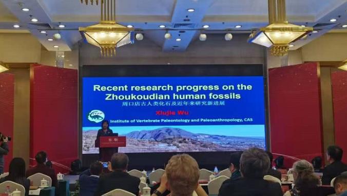 北京猿人頭蓋骨發現90年,科學家公布最新研究成果
