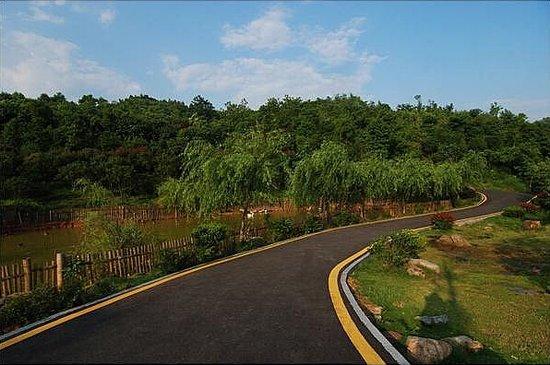 石榴灣生態公園實景圖圖片