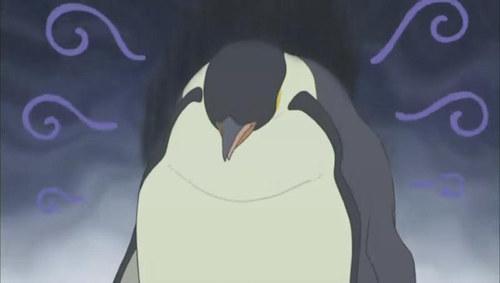 南极坏消息:15万只企鹅离开蓝星