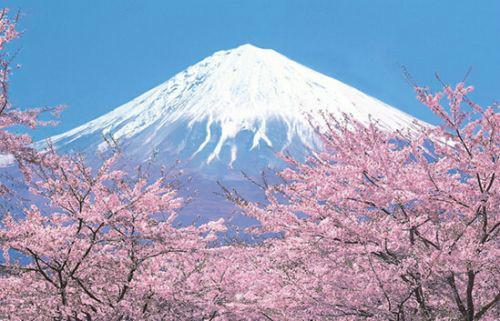 日本旅游地�_如果你去日本旅游 我推荐人气景点地