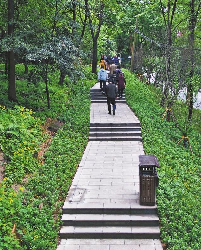 沙坪坝区首条高品质山城步道建成投用