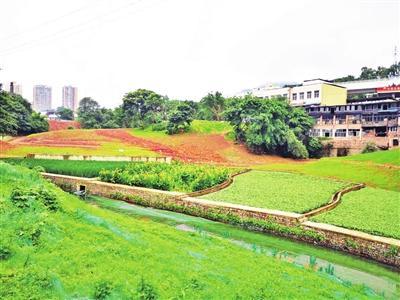 """沙坪坝""""清凤两溪·清水绿岸""""项目稳步推进"""