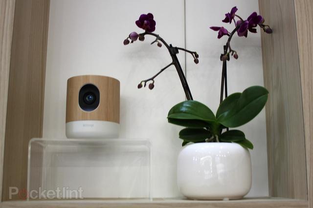 最新黄网追踪器_Withings Home智能摄像头体验 能监测婴儿哭声_数码_腾讯网