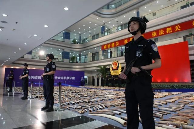 中越两国三方海关共商冲击濒危物种制品私运