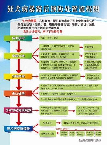 我要兽交_根据《中华人民共和国传染病防治法》规定,狂犬病在我国为乙类传染病.