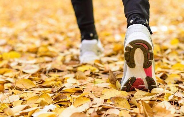 秋季养生宜养肺脏 适度秋冻防阳气外泄
