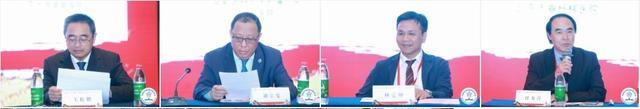 """2019老年骨科大会胜利召开 九大专业学组成立——共话""""老年骨科""""新未来"""