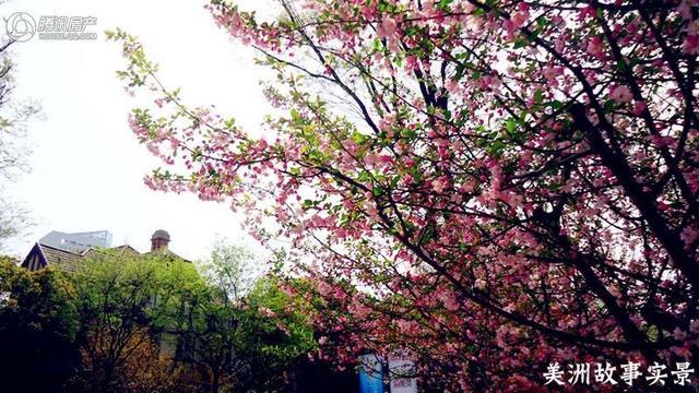 """春天来了 """"好色""""之徒看过来"""