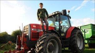 父亲被公牛扑倒 10岁男孩开拖拉机驱赶施救