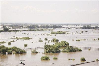 黑瞎子岛被淹图片_黑瞎子岛汛情严峻 中方领土八成面积被淹没_新闻_腾讯网