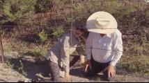 """""""偷渡""""就这么简单!79岁老人演示1秒钟从美国到墨西哥"""