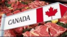 中方将暂停所有加拿大肉类对华出口?中使馆回应