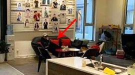 贾乃亮终于晒幸福了:工作室撸猫 李小璐意外出镜!