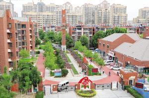 """天津一个杂乱社区如今变""""花园"""""""