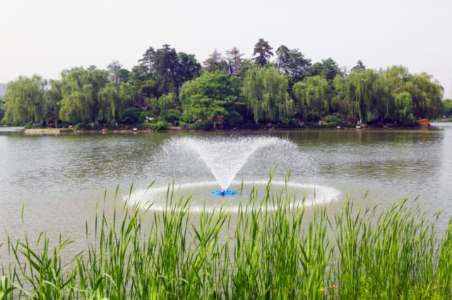 贯彻落实河湖长制 大明宫全面优化遗址区绿色生态水系