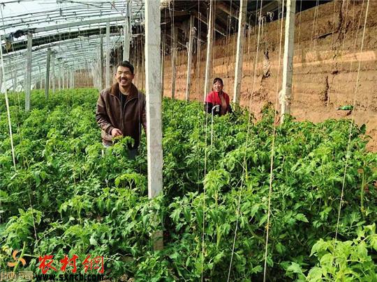 高陵区扎实推进特色现代农业建设让农业强农村美农民富