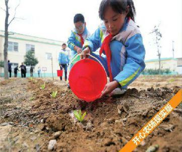 臨潼一小學校園內建開心農場 學生自種自收